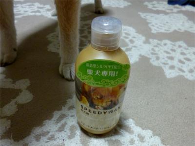 suzu02112.jpg