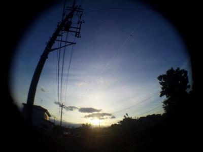 suzu06182.jpg